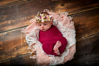 Mary's Newborn Session