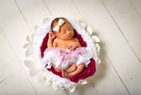 Linda Le Newborn Session