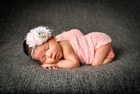 Stephanie Newborn Portraits
