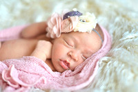 Piper's Newborn Portraits