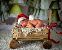 Cruz Newborn Session