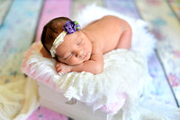 Reagan's Newborn Session