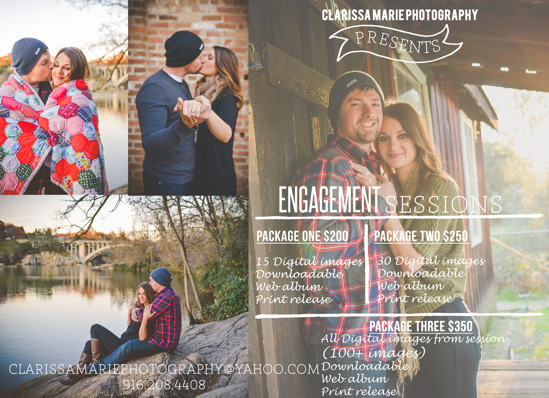 Engagement Flyer 2016 2_edited-1