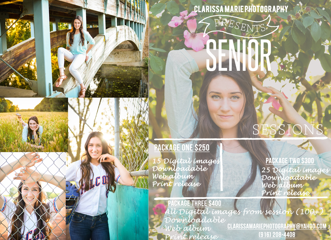 Senior Flyer 2016_edited-1